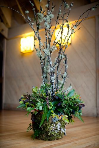tall sticks with white flowers in a moss bucket of leafy greenery    Event decoration  wedding table