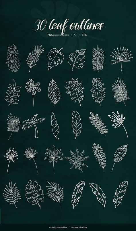 Tropical Leaves - 60 illustrations by amber&ink on @creativemarket