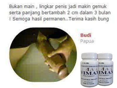 obat pembesar penis no 1 vimax kapsul herbal original canada