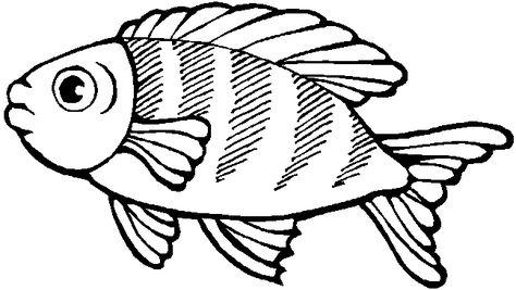 ausmalbilder fische zum ausdrucken