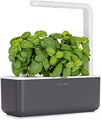 Amazon Com Click Grow Smart Garden 3 Indoor Gardening Kit