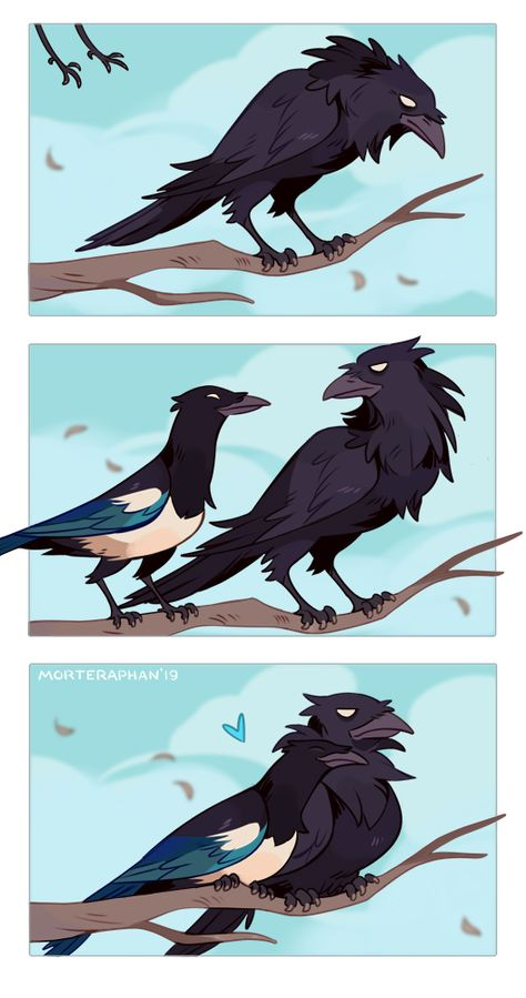 Caaw-Caaw by morteraphan on DeviantArt Cute Animal Drawings, Cute Drawings, Pretty Art, Cute Art, Cute Comics, Character Design Inspiration, Furry Art, Mythical Creatures, Amazing Art