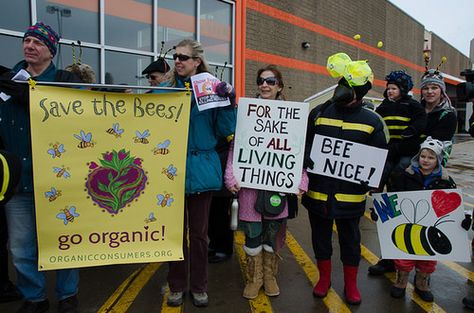 Home Depot, save the bees and stop selling bee-killing pesticides!