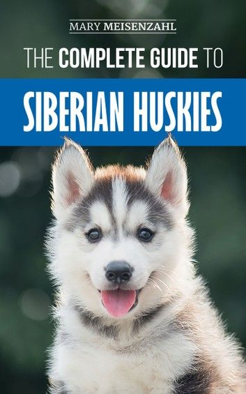 The Complete Guide To Siberian Huskies Finding Preparing