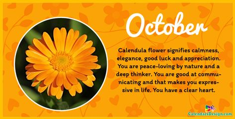 Flower For October Month Quotes October Birth Flowers Birth