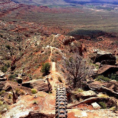 Unreal Mountain Bike Trail!
