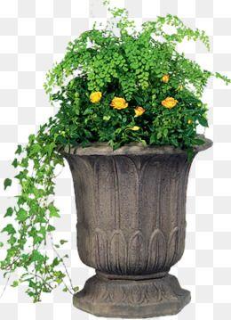 Flower Clipart Small Fresh Ceramic Pots Flower Pot Greenery Small Fresh Ceramic Pots Flower Pot Ceramic Clipart Ceramic Flower Pots Flower Pots Ceramic Flowers