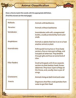Animal Classification Online Science Worksheet For 5th Grade