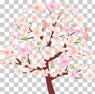 Spring Tree Blossom Png Clipart Autumn Blossom Branch Cherry Blossom Clipart Free Png Download Cherry Blossom Spring Tree Blossom