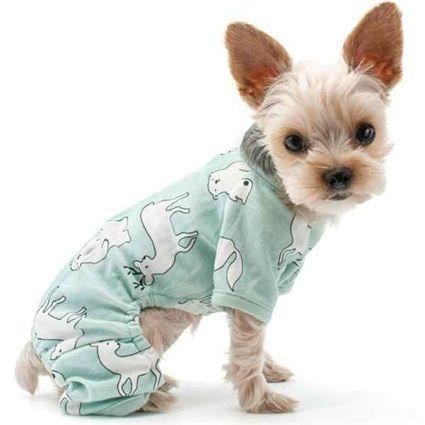 Humorous Western Dog Collar Dogwalking Dogcostumesforlabs Dog