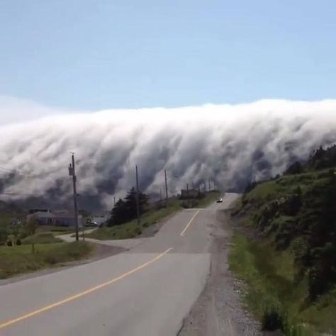 Cloud waterfall over Long Range Mountains in Lark Harbour, Newfoundland, Canada.  The cloud formation cascading down the mountain. A phenomenon known as 'orographic clouds', is produced by the forced uplift of moist air and the consequent condensation when this is cooled to saturation point.  Video by Andrew Perry via Avantgardens