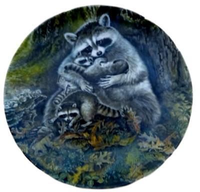Raccoons Wall Plate, Woodland Raccoon Plate, Protective Embrace, Wildlife  Porcelain Plate, Gift