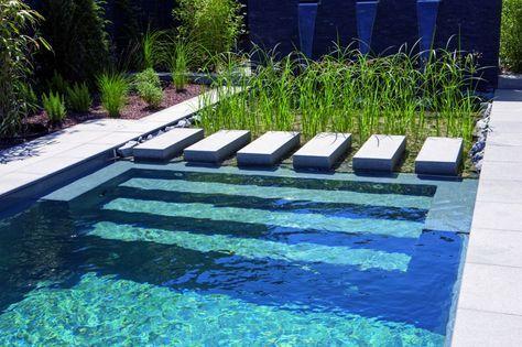 naturpool-oder-schwimmteich-mit-biologischer-natuerlicher - reihenhausgarten und pool