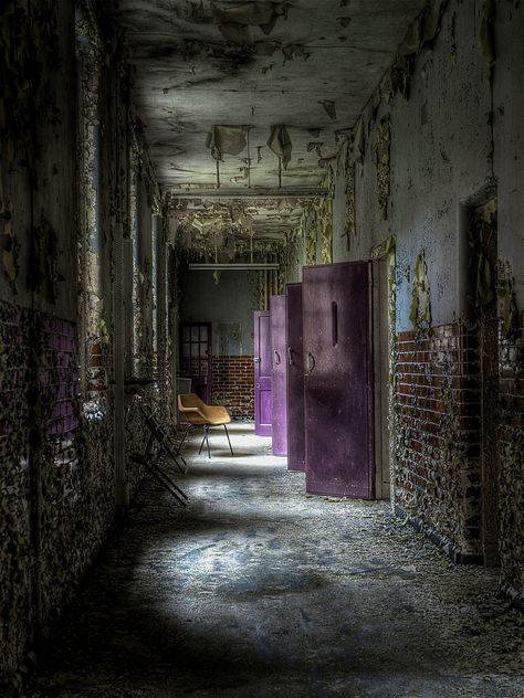 The Color Purple photographed in an abandoned asylum in the United Kingdom by RomanyWG.