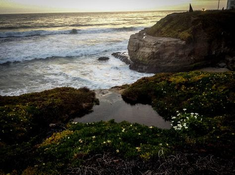 West Cliff Cove At Sunset  - Canvas Wall Art - 16 x 20 – Rodney Washington | Art Photography - $104 - rodneywashingtonartphotography.com