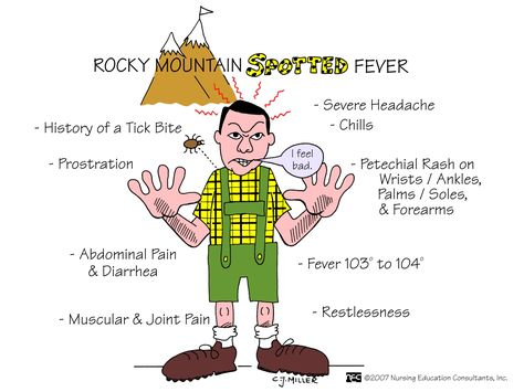 Rocky+Mountain+Spotted+Fever.jpg (1600×1200)