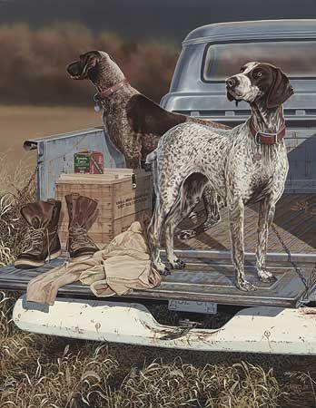 German Shorthaired Pointer Smart Friendly Perros De Caza Razas De Perros Arte Del Perro