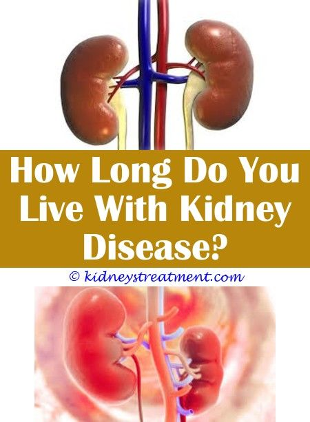 Chronic Kidney Disease Diet Chronic Kidney Disease Kidney Disease Kidney Disease Symptoms