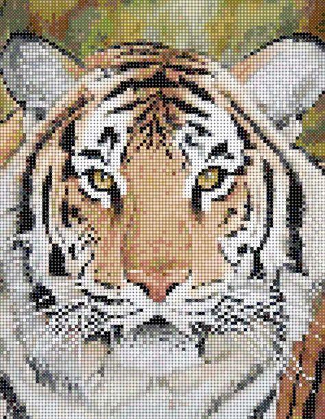 Big Cats Cross Stitch Patterns