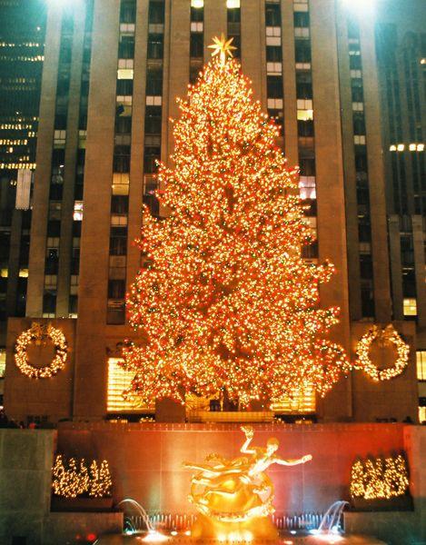 Christmas Tree in Rockefeller Center <3
