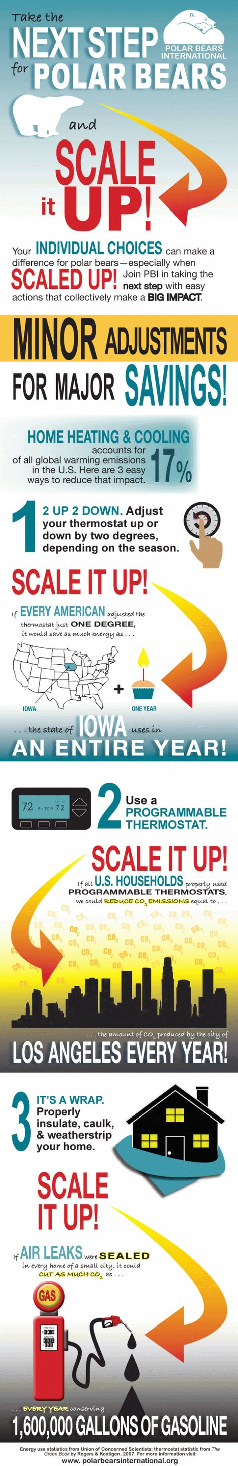 International Polar Bear Day Thermostat Challenge Polar Bears