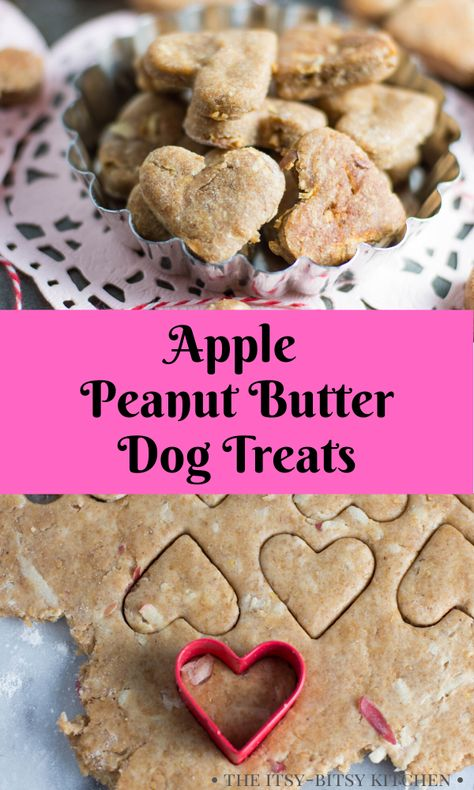Apple peanut butter dog treats are a homemade and wholesome cookie to make for your puppies! They're easy to make with just a few ingredients and dogs love them! This dog biscuits recipe is always a fun gift for dog lovers! Dog Cookie Recipes, Easy Dog Treat Recipes, Homemade Dog Cookies, Dog Biscuit Recipes, Homemade Dog Food, Dog Food Recipes, Recipe For Dog Biscuits, Pumpkin Dog Treats Homemade, Homemade Dog Biscuits