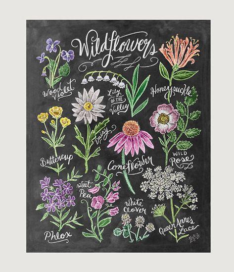 Chalk Art - Floral Art - Wildflower Field Guide Print - Wall Decor - Flower Illustration - Chalkboard Print - Chalkboard Art