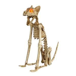 15 In Skeleton Sitting Cat With Led Illuminated Eyes Halloween Skeletons Halloween Outdoor Decorations Halloween Skeleton Decorations