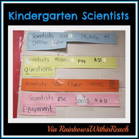 Science in Kindergarten + Preschool