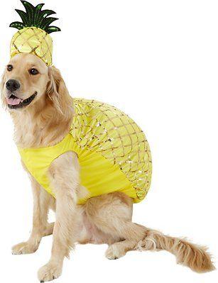 Rubie S Costume Company Pineapple Dog Costume Medium Chewy Com