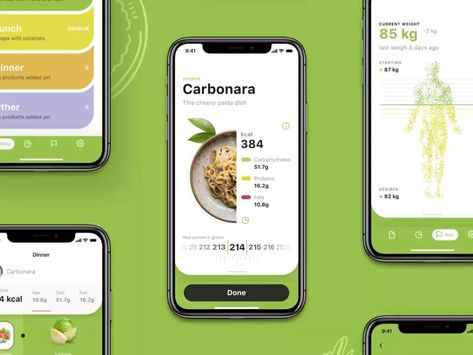 Calorie Calculator App Development Company