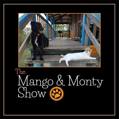 The Mango And Monty Show Fan Book The Incredibles Comic Books