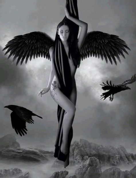 Sexy Gothic Fallen Angels | Walking On The Rainbows