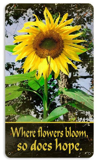Retro Sunflower Metal Sign 8 X 14 Inches With Images Sunflower Photo Sunflower Sunflower Pictures