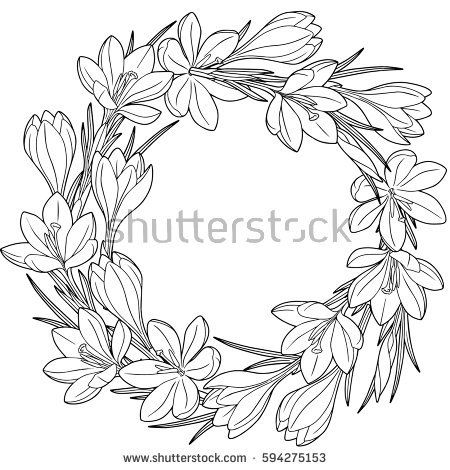 Spring Flower Wreath Of Crocuses Vector Isolated Elements Black
