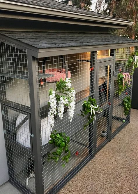 Diy Cat Enclosure, Outdoor Cat Enclosure, Cat Mansion, Cat Cages, Cat Run, Animal Room, Cat Playground, Cat Condo, Outdoor Cats