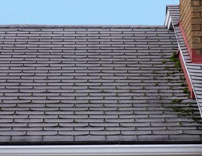 Roofing Contractors Naperville Illinois Di 2020 Teknologi