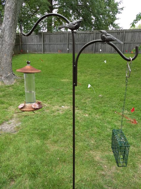 Aldi Birdseed And Suet Lawn Garden Backyard Outdoor
