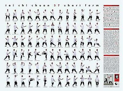 Tai Chi Chuan Short Form Poster by Roger Cotgreave   perdona ...