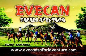 Alquiler De Animales Evecan Producción De Eventos Con Animales Rutas A Caballo Pista De Equitación Montar A Caballo