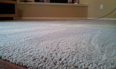 Awesome How To Get Mould Out Of Carpets And Pics In 2020 Carpet Molding Carpet Styles