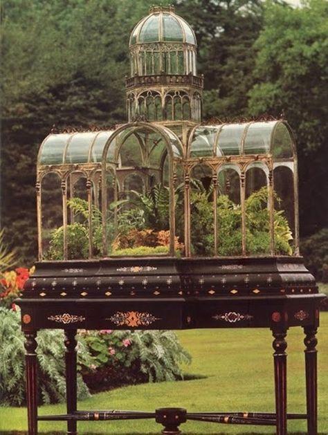 "century ""Wardian"" case -- a type of terrarium named after amateur biologist Dr. Nathaniel Ward who initiated the victorian fad of housing one's garden in elaborately styled glass terrariums. Dream Garden, Garden Art, Mini Mundo, Modelos 3d, Paludarium, Vivarium, Garden Terrarium, Terrarium Closed, Terrarium Ideas"