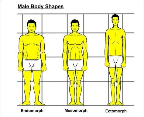 Shape masculine body How the