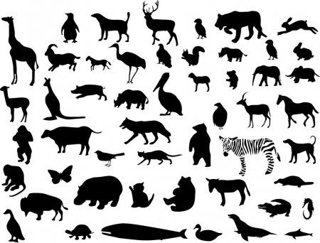 Collection Of Animal Silhouettes Vector Stock Illustration Animal Silhouette Animals Sketch Painting