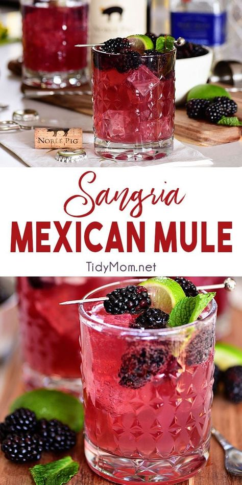 Sangria Mexican Mule Cocktail is part of food_drink - Wine lovers, this Moscow Mule is for you! Sangria Mexican Mule is a tequila based version of the classic Moscow Mule along with red wine and berries Making it fruity, zingy and a guaranteed win Beste Cocktails, Cocktail Drinks, Cocktail Desserts, Cocktails With Wine, Summer Wine Drinks, Best Cocktail Recipes, Red Sangria Recipes, Red Wine Sangria, Rose Sangria
