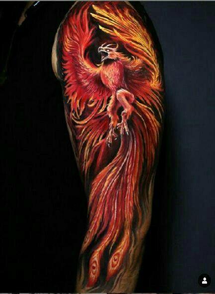 Pin De Jimmy Eduardo En Bluetooth Tatuaje De Fenix Para Hombre Tatuaje De Fenix Tatuaje De Fenix En El Brazo