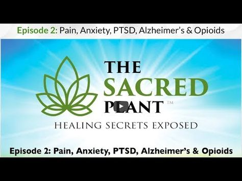 the sacred plant episode 2