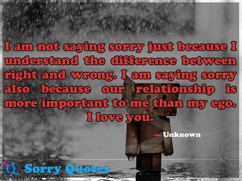 I Am Not Saying Sorry Just Because I Understand The Difference Between Right And Wrong I Am Saying Sorry Also Because Our Rel Sorry Quotes Saying Sorry Quotes
