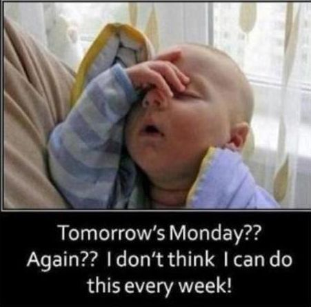 Tomorrow's Monday?? Again?? I don't think I can do this every week! #Sundayquotes #Sundaymemes #Funnysundaymemes #Funnymemes #Weekendmemes #Mondaymemes #Itssundaymemes #Lazysundaymemes #Sleepysundaymemes #Sundaychildmemes #Cutesundaymemes #Sundaymemespositive #Sundayevememes #Happysundaymemes #Memes #Sundaymorningquotes #Funnysundayquotes #Funnyquotes #Sarcasticquotes #Hilariousquotes #Humorousquotes #Dailyquotes #Everydayquotes #Instaquotes #Quoteoftheday #Quotesandsayings #therandomvibez