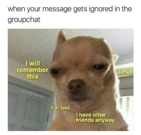 Memes have came into our lives in an enormous way. We've been indulged in those memes so much that we can't keep them out of our lives. To be honest these memes are good enough to spend your time when you have nothing to do. Here are 24 Relatable Memes. Funny Animal Jokes, Crazy Funny Memes, Really Funny Memes, Stupid Funny Memes, Cute Funny Animals, Funny Relatable Memes, Funny Disney Memes, Animal Humor, Funny New Years Memes